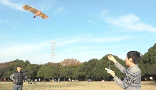簡単「ハヤブサ凧」を作ってあげよう