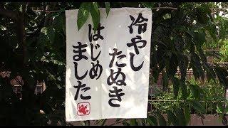 """今年も、""""冷やしタヌキ""""始めました=東武動物公園"""