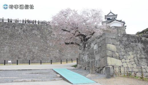 小峰城の石垣、修復完了