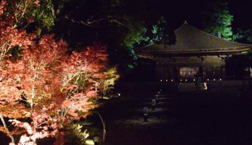 福島・いわき「白水阿弥陀堂」、例年通りライトアップ 被害から復旧、彩る紅葉
