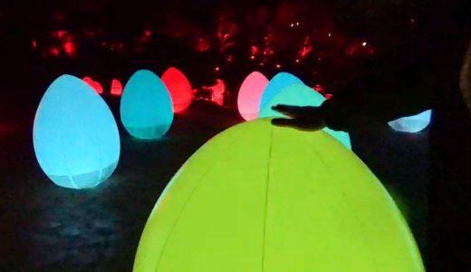栗林公園でチームラボ 光の祭を初開催