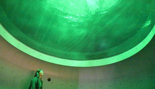 見上げるとハンマーヘッド…渦潮再現する四国水族館3月開業
