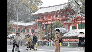 降雪で京都市の各地がうっすら雪化粧