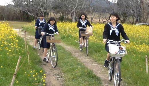 菜の花の中で女子高校生が春休みの思い出づくり