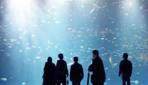 四国水族館がオープン