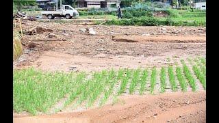 熊本豪雨 土砂崩れで住民が犠牲に 熊本県芦北町