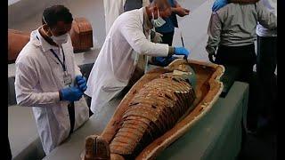 ミイラ100体以上発見 未盗掘で保存状態良好 エジプト
