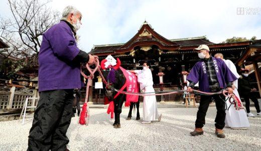 12年に1度の牛参拝 京都・北野天満宮